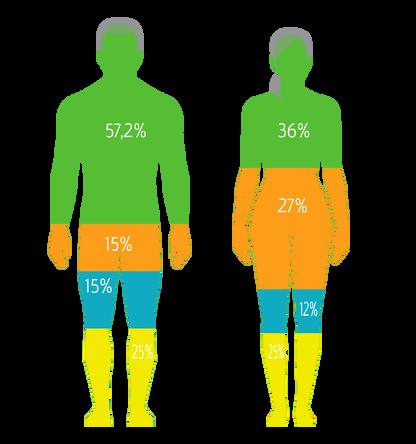 Body Analyse - photo 3.2